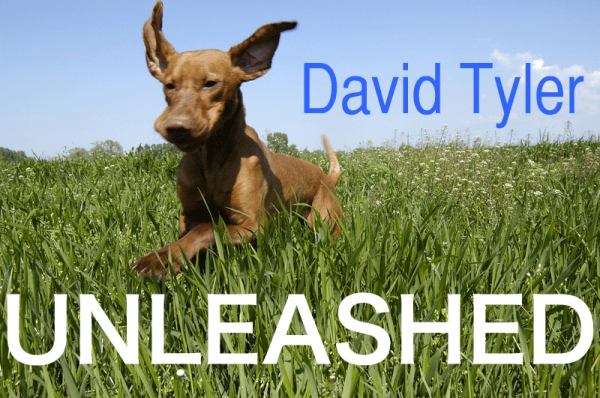 David Tyler Unleashed logo